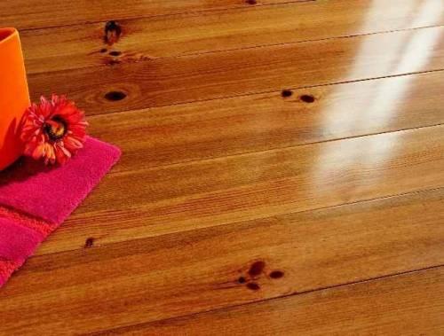 Comment Liminer Les Rongeurs Domestiques Le Bricolage