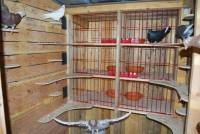 Intérieur d'un pigeonnier